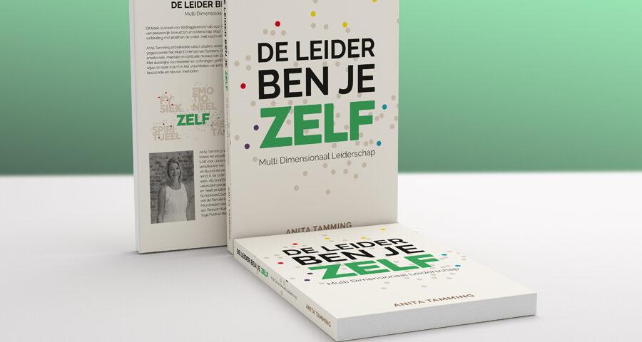Boek De Leider ben je ZELF (LAB voor Leiders)